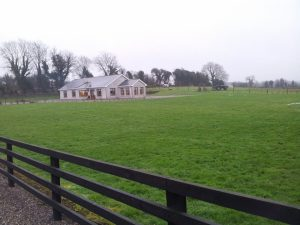 Shauna house